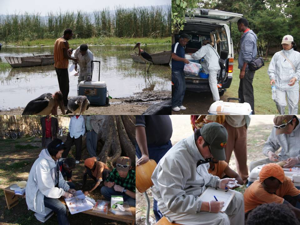 Report of Ethiopian research trip activity